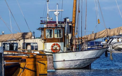 Canada Injects $62.5M To Stabilize Canadian Fish Industry