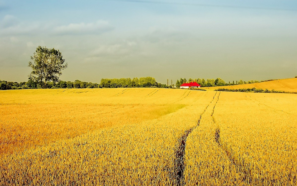 Canadian Government Launches $252 Million Fund For Farmers