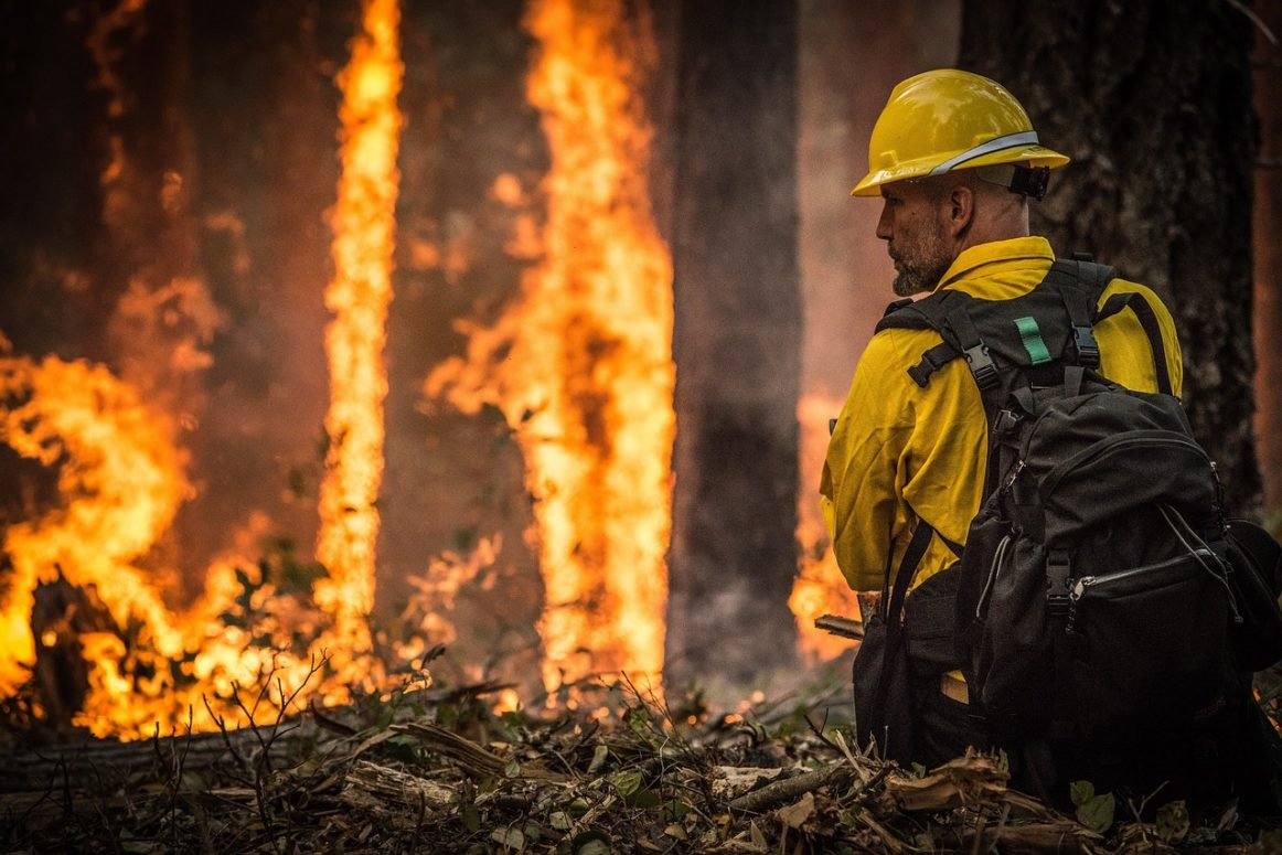 Over 11,000 hectares have burned in B.C. since April 1