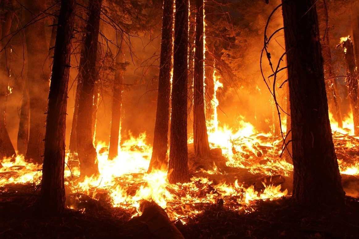 Backup is on the way! 200 B.C firefighters heading to Oregon