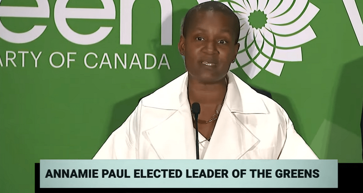 Annamie Paul poised to make waves on the national stage