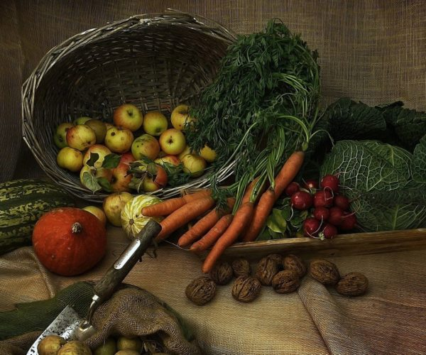 Feds Invest $1.25M into Self-Sufficiency Food Growing Facilities