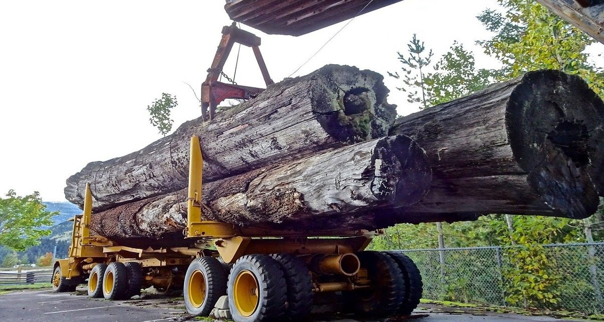 US Government Increases Tariffs On Canadian Softwood Lumber