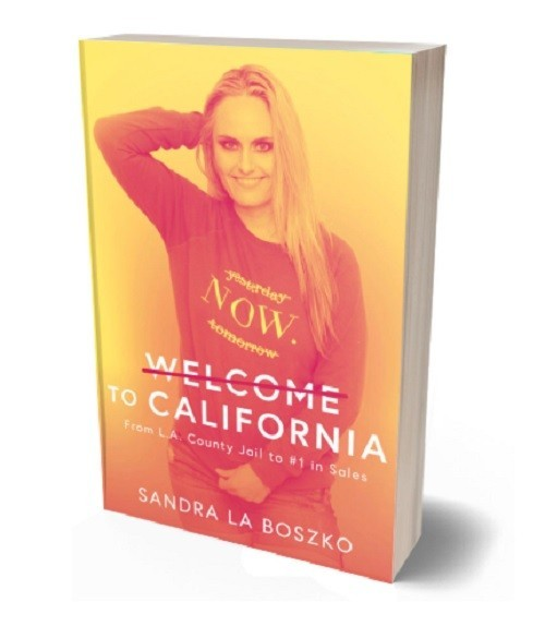 Welcome To California - Canada's Must Read Book On Mental Illness
