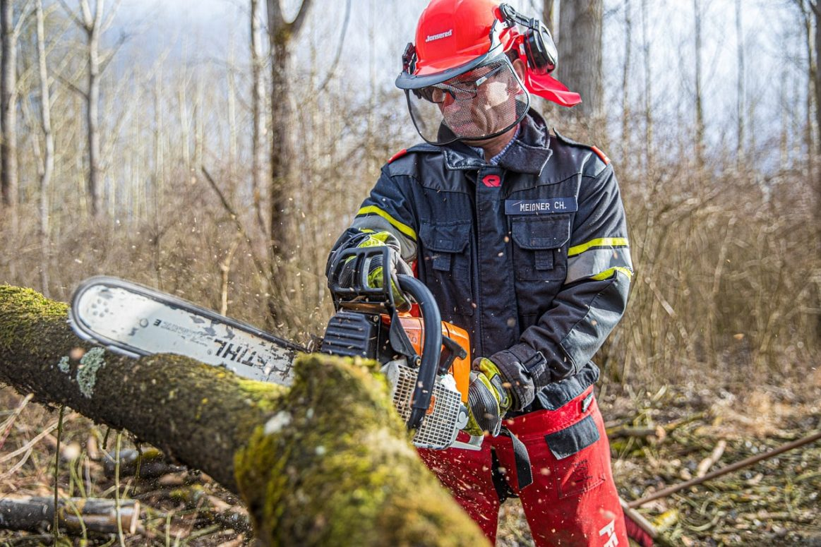 Ontario Invest $5.3 Million Into Forest Sector Employment