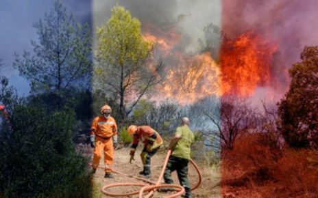France Ablaze As Wild Fires Scorch The Country