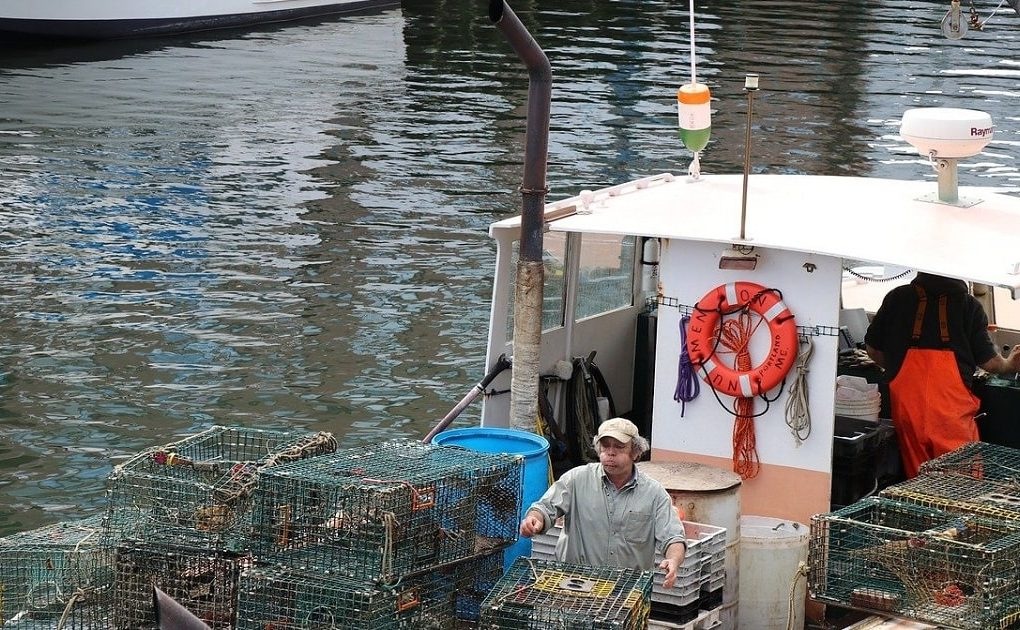 Lobster Fishing Agreement Reached With Bear River & Annapolis Valley First Nations